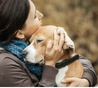 A dog lover should never forget these things.: A dog lover should never forget these things.