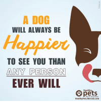 I'm always happy to see them too! 😁❤: A DOG  WILL ALWAYS BE  Happier  TO SEE YOU THAN  ANY PERSON  EVER WILL  Healthy  With Dr. Karen Becker  Healthy Pets. Mercola.com I'm always happy to see them too! 😁❤