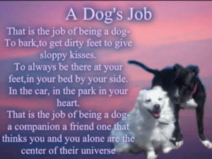 Being Alone, Dogs, and Memes: A Dog's Job  That is the job of being a dog-  To bark,to get dirty feet to give  sloppy kisses.  To always be there at your  feet,in your bed by your side.  In the car, in the park in your  heart.  That is the job of being a dog  a companion a friend one that  thinks you and you alone are the  center of their universe