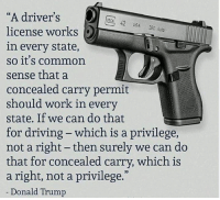 """Donald Trump, Driving, and Work: """"A driver's  license works  in every state,  so it's common  sense that a  concealed carry permit  should work in every  state. If we can do that  for driving - which is a privilege  not a right- then surely we can do  that for concealed carry, which is  a right, not a privilege.""""  Donald Trump  OCK 42 USA 380 Auto"""