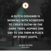 Memes, The More You Know, and Trees: A DUTCH DESIGNER IS  WORKING WITH SCIENTISTS  TO CREATE GLOW-IN-THE  DARK TREES, HOPING ONE  DAY TO USE THEM IN PLACE  OF STREET LIGHTS.  THE MORE YOU KNOW  @FACTBOLT 😮
