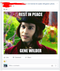 My cousin posted this today un-ironically: a ed Qt memes for syrian refugees's photo.  REST IN PEACE  GENE WILDER  Like  Share  Comment  Write a comment... My cousin posted this today un-ironically