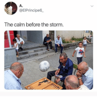 Lmao, Memes, and 🤖: A.  @EIPrincipe6  The calm before the storm Lmao they know abba is about to tear ish up😭 • Follow @savagememesss for more posts daily