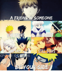 Gif, Memes, and Gifs: A ERIENONS SOMEONE  WHO KNOWS  YOU AND STILL ST Please like --> Anime GIFs