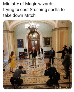 A failed attempt to defeat Mitch McConnell, the host of Voldemort, before he solidifies his power as Senate Majority Leader of the US. 2015: A failed attempt to defeat Mitch McConnell, the host of Voldemort, before he solidifies his power as Senate Majority Leader of the US. 2015