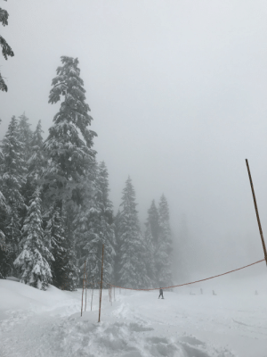 A few weeks ago I went skiing on this foggy mountain: A few weeks ago I went skiing on this foggy mountain