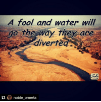 Repost @noble_omerta with @repostapp ・・・: A fool and water will  go the way they are  noble omerta Repost @noble_omerta with @repostapp ・・・