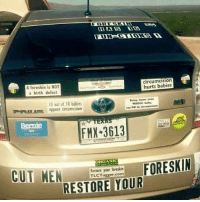 Drive, Restaurant, and Bernie: A foreskin is NOT  a birth defect  circumcision  hurts babies  0 out of 10 babies  FREoppose corcumcasion  Bring heme y  WHOLE bay  say No te  Bernie  FMX 3613  RGANI  Restore your foreskin  TLCTugger.com  RESTORE YOUR ok imagine you're going out to eat and while walking to the restaurant you just see this car and all you can think about while eating is foreskin. or like you're in a drive thru and this is the car in front of you and the person taking your order just hears you murmuring foreskin.