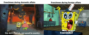 A France surrenders meme. There are many like it, but this one is mine.: A France surrenders meme. There are many like it, but this one is mine.