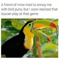 Memes, Puns, and Soon...: A friend of mine tried to annoy me  with bird puns, but I soon realized that  toucan play at that game THIS IS AMAZING 😂🐥, follow me @punlifestyle for more puns 💕