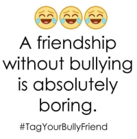 Friendship: A friendship  without bullying  is absolutely  boring  Tag YourBullyFriend