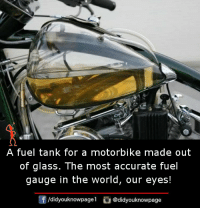 Memes, World, and 🤖: A fuel tank for a motorbike made out  of glass. The most accurate fuel  gauge in the world, our eyes!  団  /d.dyouknowpagel。@didyouknowpage