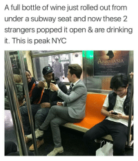 Why can't I find a full bottle that someone forgot about • ➫➫ Follow @savagememesss for more posts daily: A full bottle of wine just rolled out from  under a subway seat and now these 2  strangers popped it open & are drinking  it. This is peak NYC  ANASTASIA Why can't I find a full bottle that someone forgot about • ➫➫ Follow @savagememesss for more posts daily