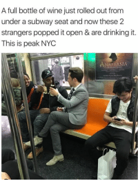 Anastasia: A full bottle of wine just rolled out from  under a subway seat and now these 2  strangers popped it open & are drinking it.  This is peak NYC  ANASTASIA