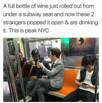 Cheers to swallowing all these germs! (@whatever.tv): A full bottle of wine just rolled out from  under a subway seat and now these 2  strangers popped it open & are drinking  it. This is peak NYC  ANASTASIA Cheers to swallowing all these germs! (@whatever.tv)