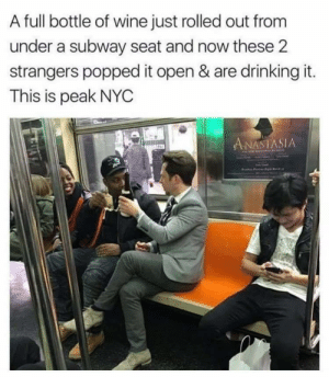 Drinking, Subway, and Wine: A full bottle of wine just rolled out from  under a subway seat and now these 2  strangers popped it open & are drinking it.  This is peak NYC  ANASTASIA Nyc nyc nyc wine!!! via /r/wholesomememes https://ift.tt/2TvF3BH