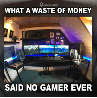 Gamer Meme: A GAMING MEMES  WHAT A WASTE OF MONEY  SAID NO GAMER EVER