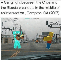 Bloods, College, and Crips: A Gang fight between the Crips and  the Bloods breakouts in the middle of  an intersection, Compton CA (2017)  @SippinSumDrank Alec is a college athlete and he still plays pocket minecraft what a loser