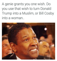 Talk about an ethical crisis..: A genie grants you one wish. Do  you use that wish to turn Donald  Trump into a Muslim, or Bill Cosby  into a woman  fuckitimarobot Talk about an ethical crisis..
