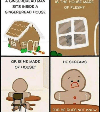 me irl: A GINGERBREAD MAN  SITS INSIDE A  GINGERBREAD HOUSE  IS THE HOUSE MADE  OF FLESH?  田   OR IS HE MADE  OF HOUSE?  HE SCREAMS  FOR HE DOES NOT KNOW me irl