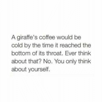 Coffee, Time, and Girl Memes: A giraffe's coffee would be  cold by the time it reached the  bottom of its throat. Ever think  about that? No. You only think  about yourself. https://t.co/4V0N66V2z8