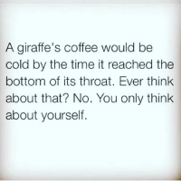 Shallow. Pedantic. Obtuse.: A giraffe's coffee would be  cold by the time it reached the  bottom of its throat. Ever think  about that? No. You only think  about yourself Shallow. Pedantic. Obtuse.