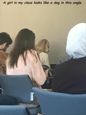 Funny Memes Of The Day 33 Pics: A girl in my class looks like a dog in this angle. Funny Memes Of The Day 33 Pics