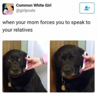 A @girl posts  Girl  Common White when your mom forces you to speak to  your relatives Y u do dis to me? ;_;