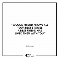 """#1947 #friendship Suggested by Amar Kant Singh: """" A GOOD FRIEND KNOWS ALL  YOUR BEST STORIES  A BEST FRIEND HAS  LIVED THEM WITH YOU""""  Unknown  epic  quotes #1947 #friendship Suggested by Amar Kant Singh"""