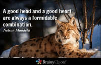 A good head and a good heart are always a formidable combination. - Nelson Mandela http://buff.ly/1yHr32O: A good head and a good heart  are always a formidable  combination.  Nelson Mandela  Brainy  Quote A good head and a good heart are always a formidable combination. - Nelson Mandela http://buff.ly/1yHr32O