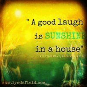 "Life, Memes, and Good: ""A good laugh  is SUNSHINE  in a house""  w11as xepetbeke  ww.lyndafield.com Lynda Field Life Coach"
