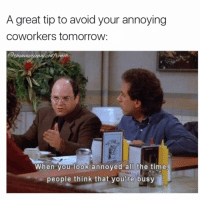 Memes, True Story, and Coworkers: A great tip to avoid your annoying  coworkers tomorrow  theamericanizeafrench.  When you look annoyed all the time  people think that you're busy This is me most of the day... True story (@theamericanizedfrench)