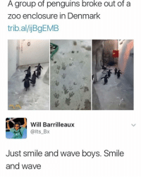 Memes, Denmark, and Penguins: A group of penguins broke out of a  Zoo enclosure in Denmark  trib.al/ijBgEMB  Will Barrilleaux  @lts_Bx  Just smile and wave boys. Smile  and wave 😩