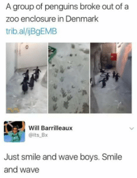 Smile And Wave: A group of penguins broke out of a  zoo enclosure in Denmark  trib.al/jBgEMB  Will Barrilleaux  @lts Bx  ust smile and wave boys. Smile  and wave