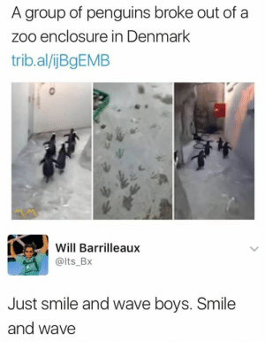 Just Smile and Wave Boys via /r/memes https://ift.tt/2O7cEiQ: A group of penguins broke out of a  zoo enclosure in Denmark  trib.al/jBgEMB  Will Barrilleaux  @lts_BX  Just smile and wave boys. Smile  and wave Just Smile and Wave Boys via /r/memes https://ift.tt/2O7cEiQ
