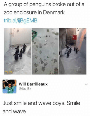 Freedooom: A group of penguins broke out of a  zoo enclosure in Denmark  trib.al/ijBgEMB  Will Barrilleaux  @lts_Bx  Just smile and wave boys. Smile  and wave Freedooom