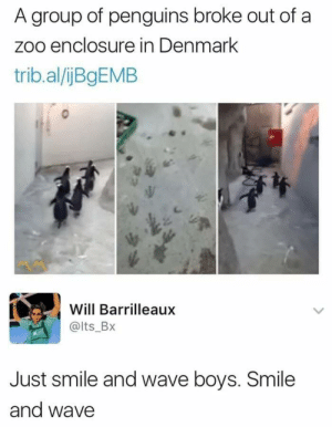 Denmark, Penguins, and Smile: A group of penguins broke out of a  zoo enclosure in Denmark  trib.al/jBgEMB  Will Barrilleaux  @lts_BX  Just smile and wave boys. Smile  and wave Hugh, Jack, man the station