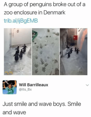 Dank, Memes, and Target: A group of penguins broke out of a  zoo enclosure in Denmark  trib.al/ijBgEMB  Will Barrilleaux  @lts_BX  Just smile and wave boys. Smile  and wave kowalski assemble by vinil96 MORE MEMES