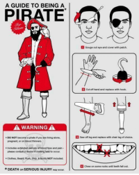 Beard, Bloods, and Booty: A GUIDE TO BEING A  WARNING A  DO NOT become a pirate if you are living alone,  pregnant, or on blood thinners.  Includes extended periods of blood loss and pain  please consult a doctor if clotting fail to occur.  Clothes, Beard, Rum, Ship, 8 Booty NOT included.  *DEATH OR SERIOUS INJURY  may occur.  1 Gouge out eye and cover with patch.  cut off hand and replace with hook.  saw off log and replace with chair leg of choice.  4 chew on some rocks until teeth falout. ~Beast~