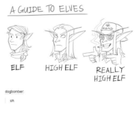 Swagging: A GUIDE TO ELWES  SWAG  ELF HIGH ELF REALLY  HIGH ELF  dogbomber  oh
