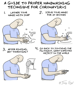 a guide to proper handwashing for coronavirus [OC]: a guide to proper handwashing for coronavirus [OC]