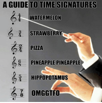 Memes, Omg, and Pizza: A GUIDE TO TIME SIGNATURES  WATERMELON  STRAWBERRY  PIZZA  PINEAPPLE PINEAPPLE  HIPPOPOTAMUS  OMG GTFO
