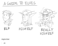 Swagging: A GULDE TO ELWES  SWAG  ELF HIGH ELF REALLY  HIGH ELF  dogbomber:  oh