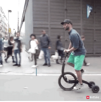 Funny, Tricycle, and Anyone: a Halfbike Tricycle anyone?