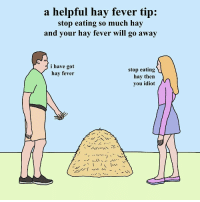 Idiot, Got, and Fever: a helpful hay fever tip:  stop eating so much hay  and your hay fever will go away  i have got  hay fever  stop eating  hay then  you idiot