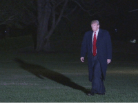 A homeless man wanders Central Park looking for a place to sleep (2018): A homeless man wanders Central Park looking for a place to sleep (2018)