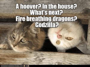 Fire, Godzilla, and House: A hoover? In the house?  What's next?  Fire breathing dragons?  Godzilla?  ICANAASCHEEZERGERCOM