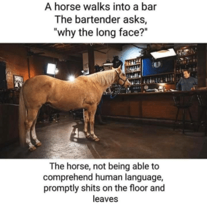 A Horse is a Horse… by Rollin_Soul_O MORE MEMES: A Horse is a Horse… by Rollin_Soul_O MORE MEMES
