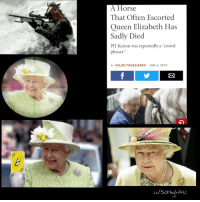 "Queen: A Horse  That Often Escorted  Queen Elizabeth Has  Sadly Died  PH Keston was reportedly a ""crowd  pleaser.""  by CHLOE FOUSSIANES JAN 4, 2019"