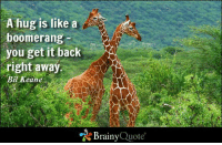 "A hug is like a boomerang - you get it back right away. - Bil Keane https://www.brainyquote.com/quotes/quotes/b/bilkeane106508.html #brainyquote #QOTD #hugs #giraffes: A hug is like a  boomerang  you get it back  right away  Bil Keane  ""N Brainy  Quote A hug is like a boomerang - you get it back right away. - Bil Keane https://www.brainyquote.com/quotes/quotes/b/bilkeane106508.html #brainyquote #QOTD #hugs #giraffes"